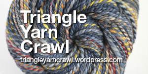 TriangeYarnCrawl_Bug300x150